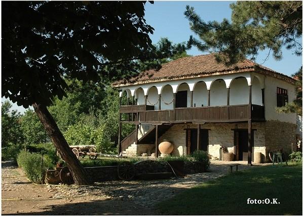Arheo - etno park, akademska srpska asocijacija