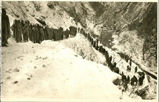 albanska golgota, prvi svetski rat, Akademska srpska asocijacija