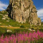 planina, akademska srpska asocijacija
