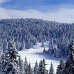 planina, smeg, akademska srpska asocijacija