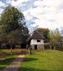 кућа  Вука Стефановића Караџића, Академска српска асоцијација