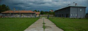 Logor iz Jasenovca, Dara na onlajn času srpskog jezika, Akademska srpska asocijacija